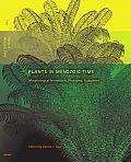 Plants in Mesozoic Time: Morphological Innovations, Phylogeny, Ecosystems