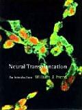 Neural Transplantation An Introduction