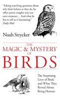 Magic & Myster of Birds