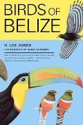 Corrie Herring Hooks Series #57: Birds of Belize