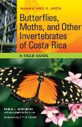 Butterflies, Moths, and Other Invertebrates of Costa Rica: A Field Guide