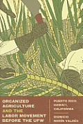 Organized Agriculture and the Labor Movement Before the UFW: Puerto Rico, Hawaii, California
