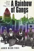 Rainbow of Gangs Street Cultures in the Mega City