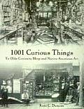 1001 Curious Things Ye Olde Curiosity Shop & Native American Art