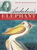 Audubons Elephant