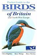 Pocket Guide to the Birds of Britain & North West Europe