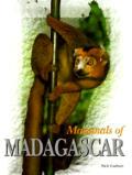 Mammals Of Madagascar