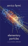 Elementary Particles (Silliman Lectures Series)