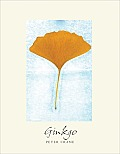 Ginkgo The Tree That Time Forgot
