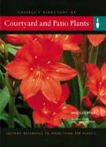 Courtyard & Patio Plants