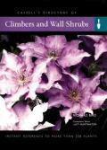 Climbers & Wall Shrubs