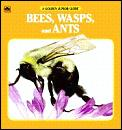 Bees Wasps & Ants A Golden Junior Guide