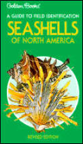 Seashells of North America Golden Guide To Field Identification