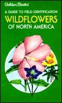 Wildflowers Of North America A Guide To Field