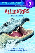 Alligators Life In The Wild Road To Read