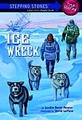 Ice Wreck Stepping Stones True Stories