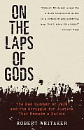 On the Laps of Gods The Red Summer of 1919 & the Struggle for Justice That Remade a Nation