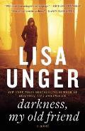 Darkness My Old Friend A Novel