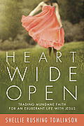 Heart Wide Open Trading Mundane Faith for an Exuberant Life with Jesus