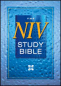 Bible Niv Study Compact Red Letter