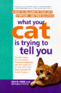 What Your Cat Is Trying To Tell You A He