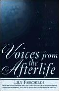 Voices From The Afterlife A Guide To Healing