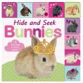Lift-The-Flap Tab: Hide and Seek Bunnies (Lift-The-Flap Tab Books)