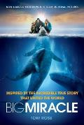 Big Miracle (11 Edition)