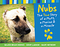 Nubs The True Story Of A Mutt A Marine & A Miracle