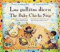 Los Pollitos Dicen The Baby Chicks Sing