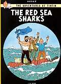 Red Sea Sharks Cover