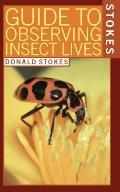 Guide To Observing Insect Lives
