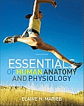 Essentials of Human Anatomy & Physiology 10th Edition