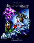 Principles of Biochemistry Cover
