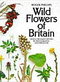 Wild Flowers of Britain: Over a Thousand Species by Photographic Identification