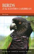 Birds of the Eastern Caribbean (Caribbean Pocket Natural History Series)