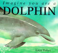 Imagine you are a dolphin