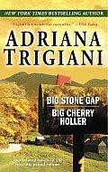 Big Stone Gap Big Cherry Holler