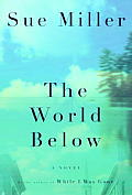 The World below: A Novel Cover