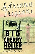 Big Cherry Holler A Big Stone Gap Novel