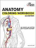 Anatomy Coloring Workbook 2ND Edition Cover