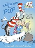 A Great Day for Pup (Cat in the Hat's Learning Library) Cover