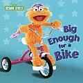 Big Enough For A Bike
