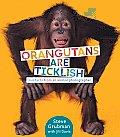 Orangutans Are Ticklish: Fun Facts from an Animal Photographer