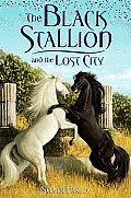 Black Stallion & the Lost City