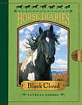 Horse Diaries #08: Horse Diaries #8: Black Cloud