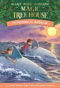 Magic Tree House #9: Dolphins at Daybreak Cover