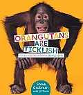 Orangutans Are Ticklish: Fun Facts from an Animal Photographer Cover