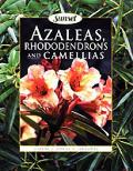 Azaleas Rhododendrons & Camellias