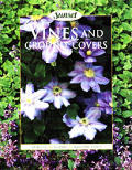 Vines and Ground Covers